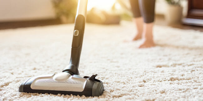 Canister Pet Vacuums