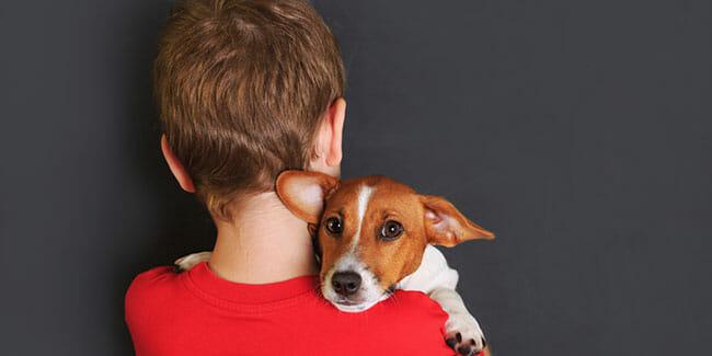 Pet Vacuums Help With Pet Allergies